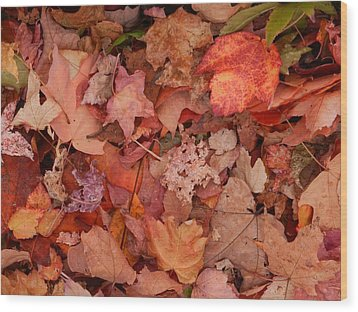Wood Print featuring the photograph Autumn Leaves by Karen Molenaar Terrell