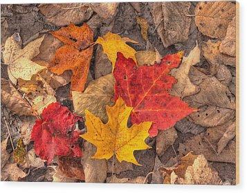 Autumn Leaves Wood Print by Matt Dobson