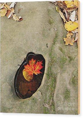 Autumn Maple Leaf Wood Print by Matt Tilghman