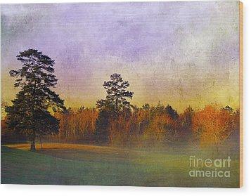 Autumn Morning Mist Wood Print by Judi Bagwell