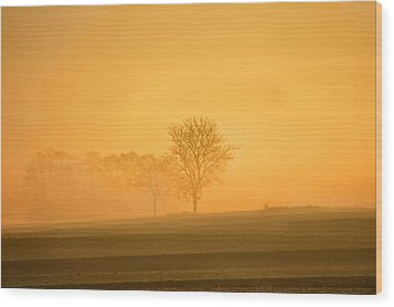 Autumn Morning Wood Print by Philippe Sainte-Laudy Photography