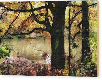 Autumn Oak Tree Wood Print