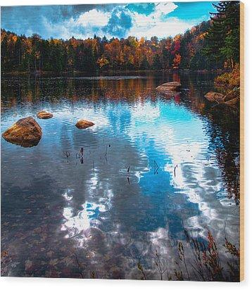 Autumn On Cary Lake Wood Print by David Patterson