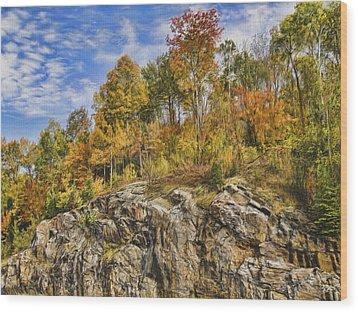 Autumn On The Rocks Wood Print by Jo-Anne Gazo-McKim