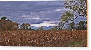 Autumn Overcast 12 Wood Print by Dave Dresser