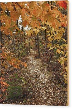 Autumn Path Wood Print by Raymond Earley