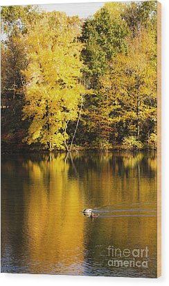 Autumn Pond Wood Print by Leslie Leda