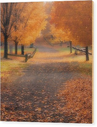Wood Print featuring the photograph Autumn by Raymond Earley