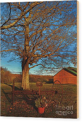 Autumn Rest Wood Print by Diane E Berry