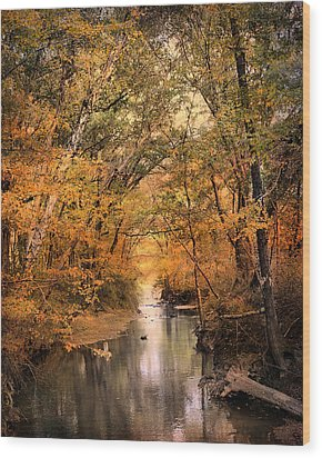 Autumn Riches 2 Wood Print by Jai Johnson