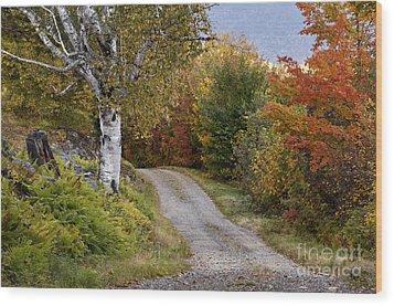 Autumn Road - D005840 Wood Print by Daniel Dempster