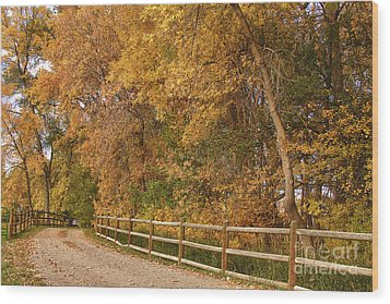 Autumn  Road To The Ranch Wood Print by James BO  Insogna