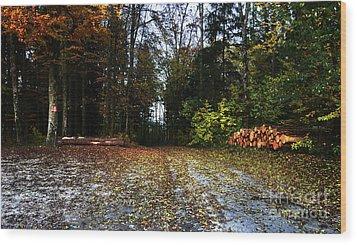 Wood Print featuring the photograph Autumn Scene by Bruno Santoro