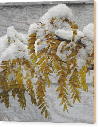 Wood Print featuring the photograph Autumn Snow by Michelle Frizzell-Thompson