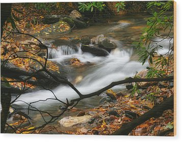 Wood Print featuring the photograph Autumn Spring by Joan Bertucci