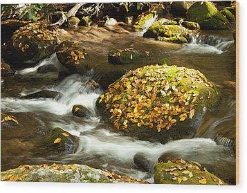 Autumn Stream Wood Print by Lena Auxier