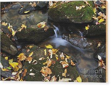 Autumn Stream Monongahela National Forest Wood Print by Thomas R Fletcher