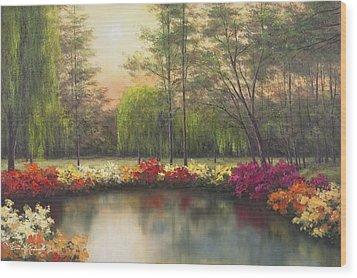 Autumn Sunset Wood Print by Diane Romanello