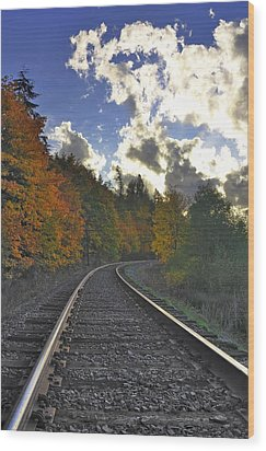 Autumn Tracks Wood Print by Tyra  OBryant