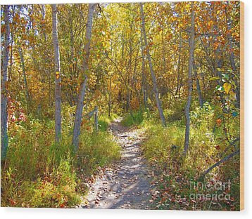 Autumn Trail Wood Print by Jim Sauchyn