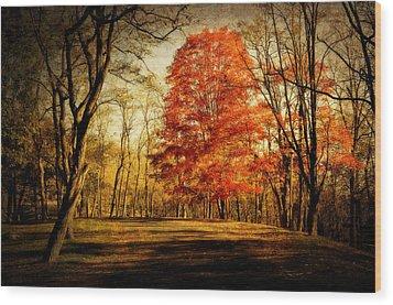 Autumn Trail Wood Print by Kathy Jennings