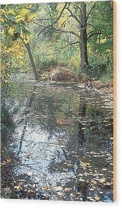 Autumn Vale Wood Print