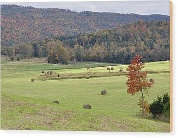 Autumn Valley Hay Bales Wood Print by Jan Amiss Photography