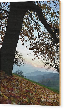Autumn View Wood Print by Bruno Santoro