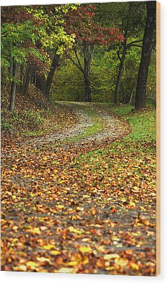 Autumn Walk In The Forest Wood Print