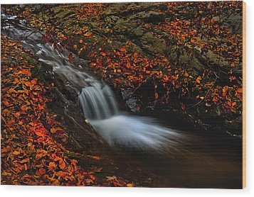Autumn Waterfall Wood Print by Irinel Cirlanaru