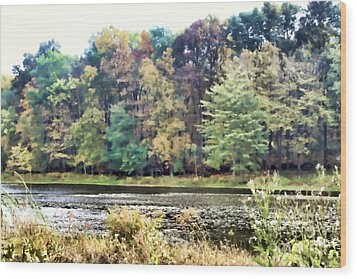 Autumn's Brush At The Red Ant Fort Wood Print by Christine Segalas