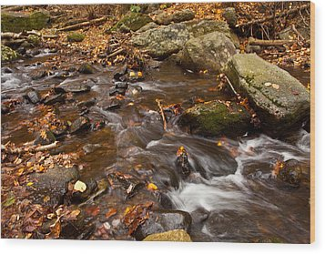 Autumns Creek Wood Print by Karol Livote
