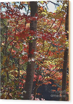 Autumn's Delight Wood Print by Diane E Berry
