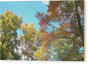 Wood Print featuring the photograph Autumn's Vibrant Image by Pamela Hyde Wilson