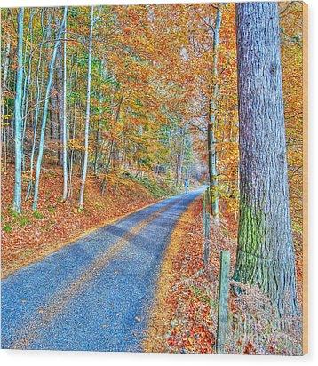 Autumns Way Bleu  Wood Print by John Kelly