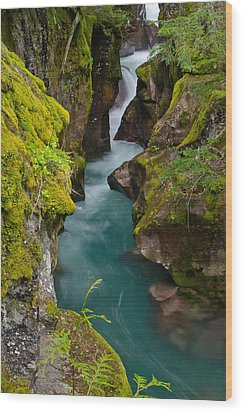 Avalanche Gorge Wood Print by Greg Nyquist
