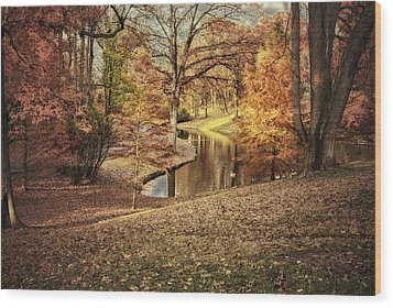 Wood Print featuring the photograph Awesome Autumn by Mary Timman