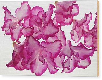 Azalea Abstract Wood Print by Brad Rickerby