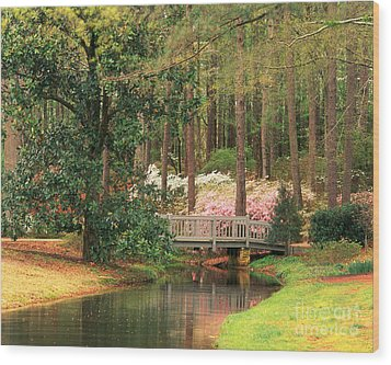 Azaleas And Footbridge Wood Print by Michael Hubrich and Photo Researchers