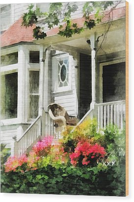 Azaleas By Porch With Wicker Chair Wood Print by Susan Savad