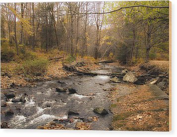 Babbling Brook In Autumn Wood Print