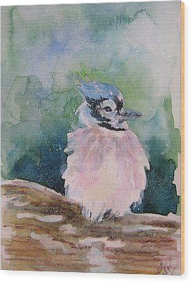 Wood Print featuring the painting Baby Blue Jay by Gloria Turner