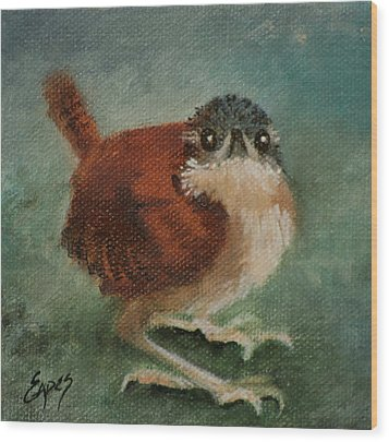 Baby Carolina Wren 2 Wood Print