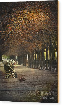 Baby Carriage With Toy Bear Alone On Street Wood Print by Sandra Cunningham