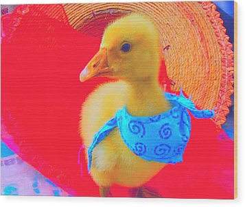 Wood Print featuring the painting Baby Dodo by Bogdan Floridana Oana