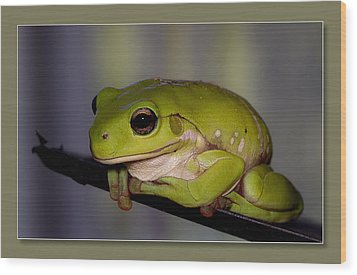 Wood Print featuring the digital art Baby Frog by Kevin Chippindall