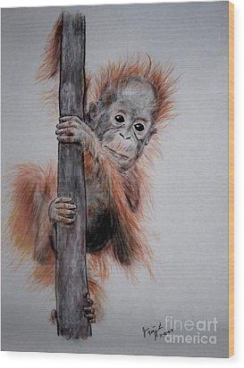 Baby Orangutan  Wood Print by Jim Fitzpatrick