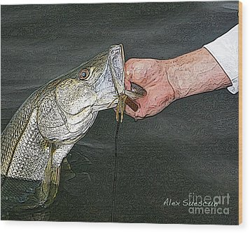 Back Bay Snook Wood Print by Alex Suescun