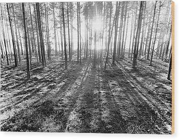 Backlight Wood Print by Micael  Carlsson