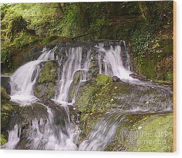 Badger Dingle Wood Print by John Chatterley